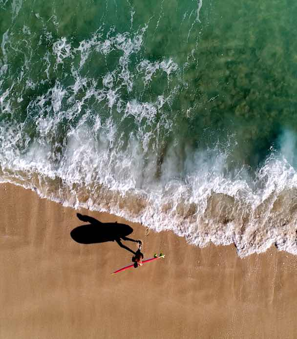 Video of Coots with surfboard on beach