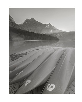 Greyscale photograph of surf boards on beach